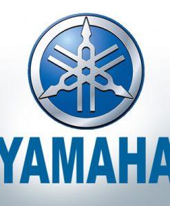 Anoden kompatibel zu Yamaha und Yanmar Zink